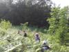 taborniski-pohod-izdelava-herbarija-susenje-cajev-16-large